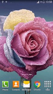 3D Rose Live Wallpaper HD - náhled