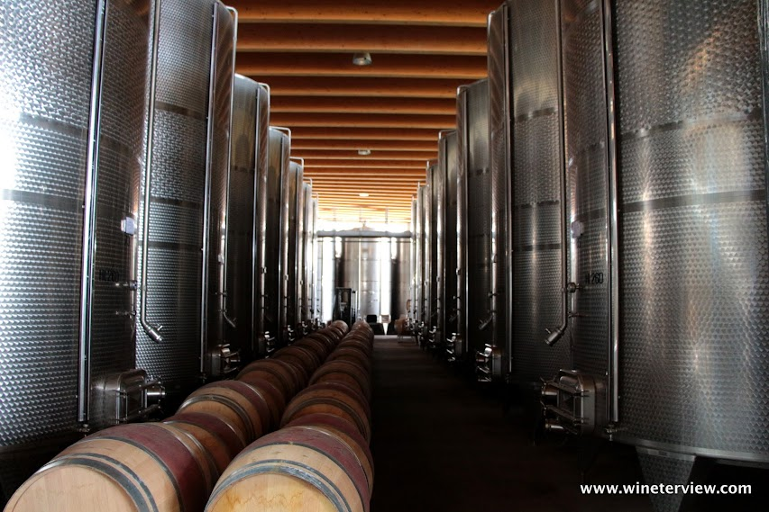 ammiraglia, tenuta ammiraglia,marchesi de frescobaldi, frescobaldi, famiglia frescobalti, vino rosso, visita cantina, maremma, maremma vino, maremma wine, red wine, wine, wine industry, wine cellar, winery, winery tuscany, cantina toscana, piero sartogo, architecture, winery architecture, winery design, open air winery