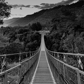 by Ilan Abiri - Black & White Landscapes ( clouds, mountains, sky, black and white, trees, forest, bridge, travel, landscape )