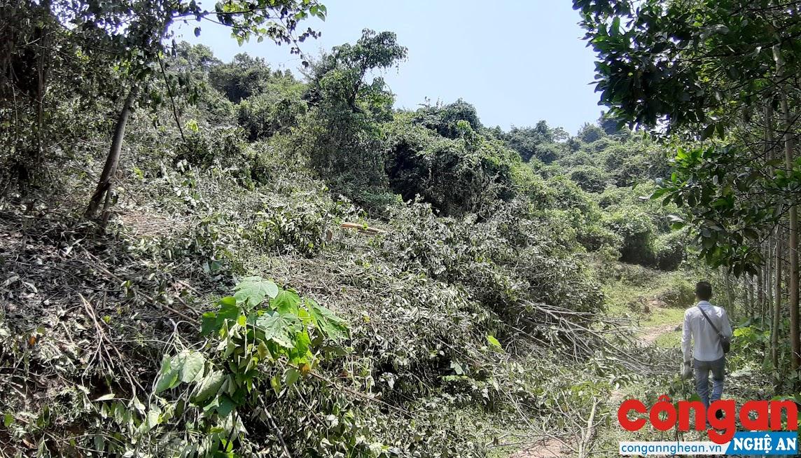 Người dân xã Nghĩa Hành phát sẻ thực bì trên phần đất được giao cho người dân xã Phú Sơn theo Nghị định 63/CP