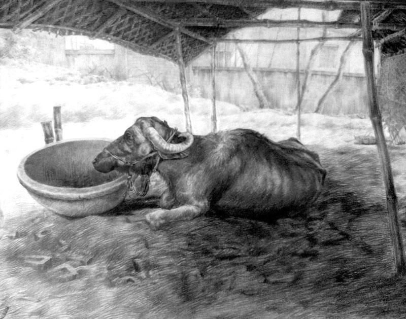 Sketch of Buffalo