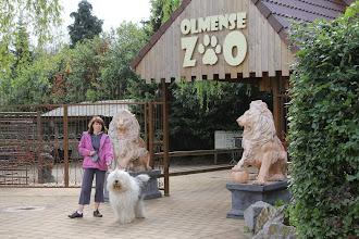 Photo: Kampenhoutse hondenschool en Boesc op bezoek......