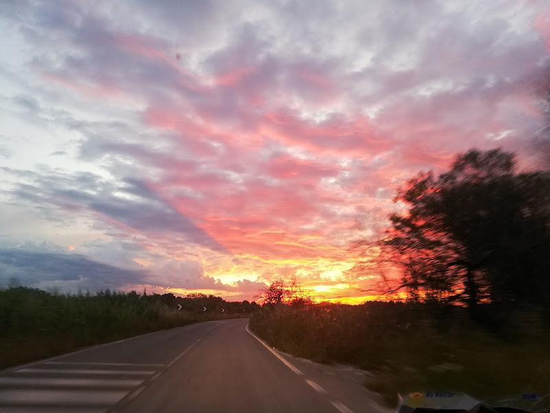 Road trip di autumn