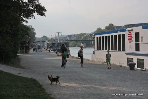 https://lh3.googleusercontent.com/_uzLsIJX7LLU/TdRNok9QwfI/AAAAAAAAJsY/TpsjTd_VFYg/Regensburg-Donauspaziergang-Villa-Uferweg-IMG_1739_ji.jpg
