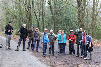 Photo: B walk, Aherlow House to Bansha Woods, Sunday, March 17th, 2013. Leader George Keogh