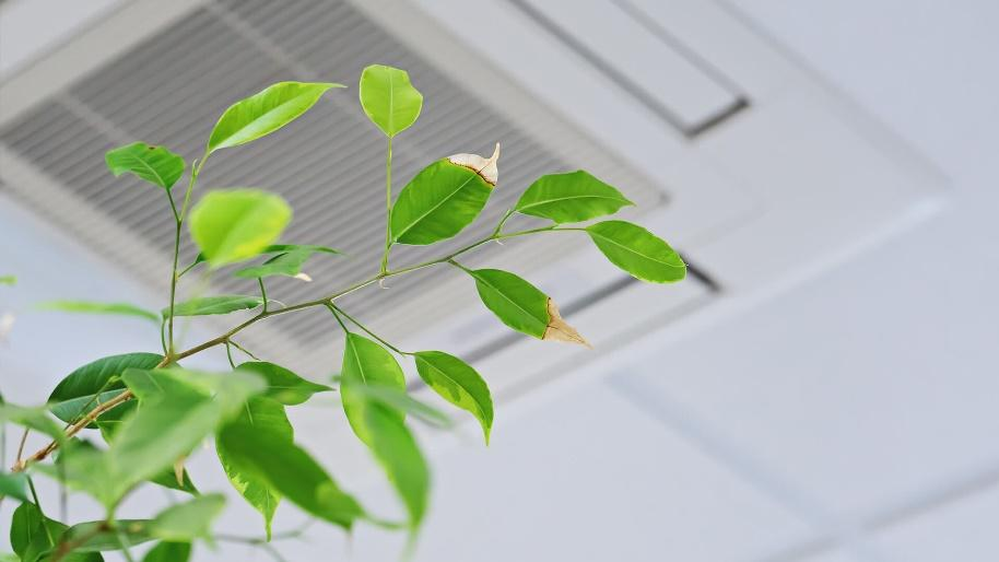 Raise Your IAQ: Why Indoor Air Quality Matters - Build Magazine