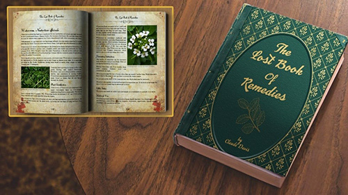 The Lost Book Of Remedies - Review