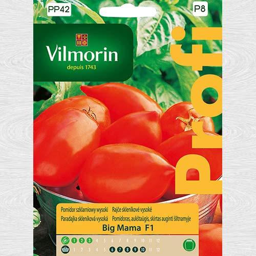 Pomidor szklarniowy wysoki Big Mama F1 obraz 1