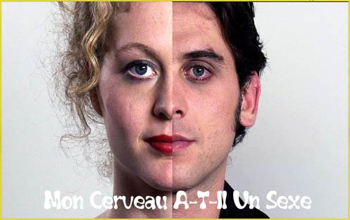 Czy M�zg Ma P�e� / Mon Cerveau A-T-Il Un Sexe (2010)  PL.HDTV.1080i.h264-Sante / Lektor PL