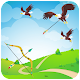 Eagle Hunting Archery (game)