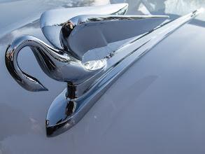 Photo: 1952 Packard Hood Ornament
