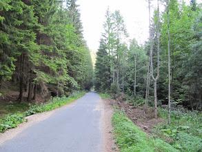 Photo: 02.Na żółtym szlaku w Gaderskiej dolinie.