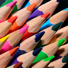 Color Pencils by Sanjeev Kumar - Artistic Objects Education Objects (  )