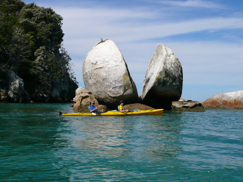 Split apple in Abel Tasman