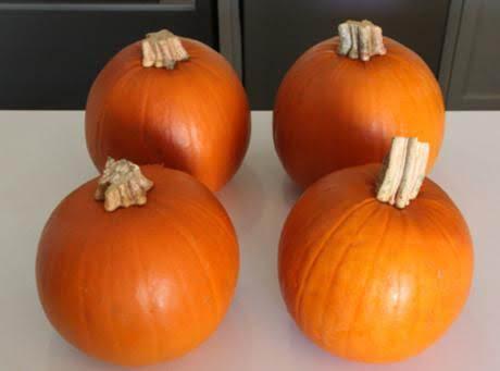 Preparing Fresh Pumpkin Recipe