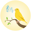 Canaries Birdsong icon