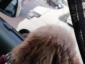 ウィッシュ ZNE10G CBA-ZNE-10Gのカスタム事例画像 ひろパパさんの2020年03月05日15:55の投稿
