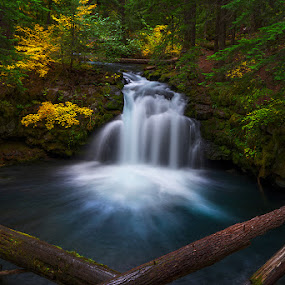 Fall and Falls by Qing Zhu - Landscapes Waterscapes ( foliage, forest, falls, waterfalls, fall, natural, creek, stream, autumn, water, flow, slow shutter )