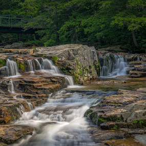 Jackson Falls by Cindy Hartman - Landscapes Waterscapes ( water, jackson, green, new hamphsire, falls, bridge,  )
