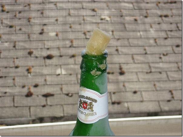 Cerveja gelada (11)