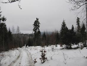 Photo: 22.Teraz kierujemy nasze kroki na Przełęcz Glisne i Luboń Wlk. (widoczny w oddali, nieco we mgle).