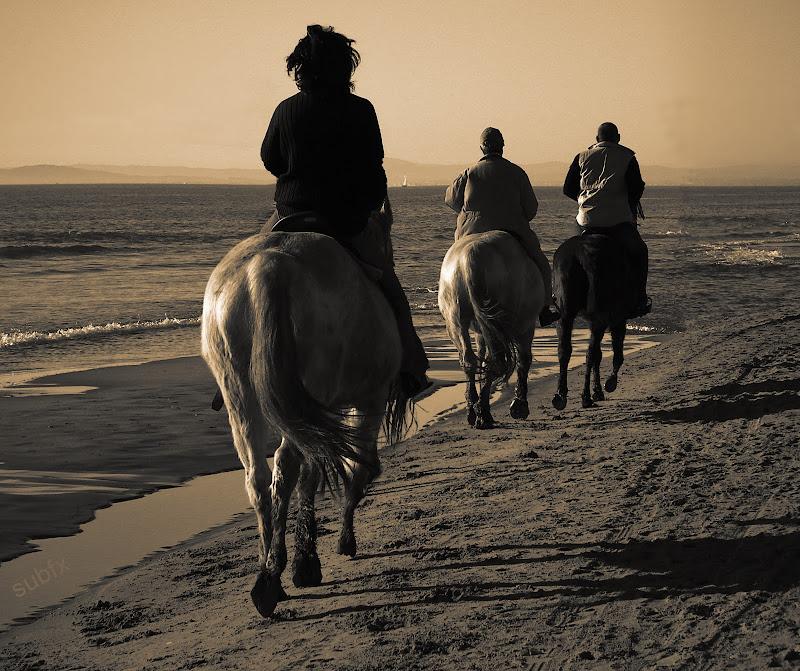 """Défi Post Traitement XVIII : """"Promenade sur la plage"""" Defi18_subfx_1"""