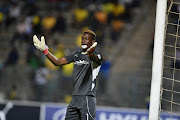 FILE IMAGE: Baroka FC goalkeeper Elvis Chipezeze.