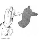 Hand Shadow Tricks icon