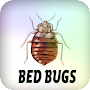 Bed Bugs APK icon