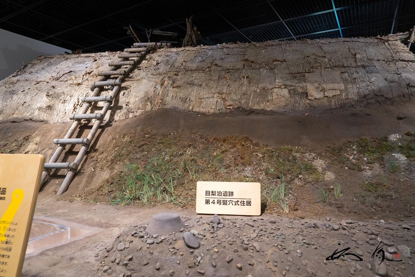 目梨泊遺跡