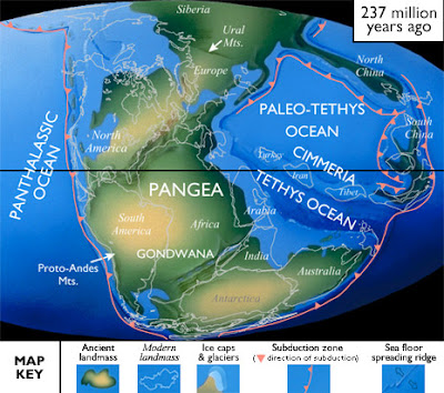 Triassic period new jersey paleontology north american paleogeography as pangea began to break apart rift basins developed along the modern east coast and filled with sediment and lava flows gumiabroncs Image collections
