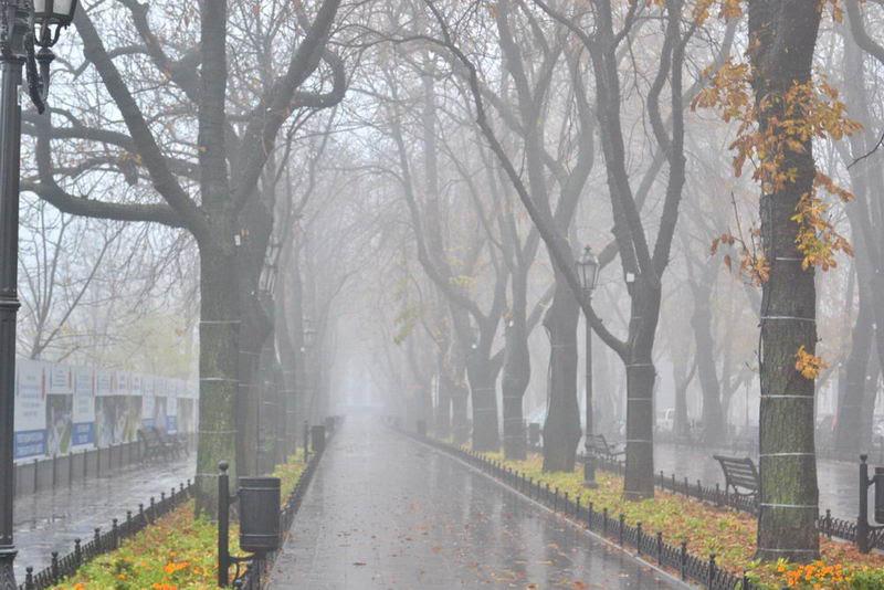 Туманный Приморский бульвар