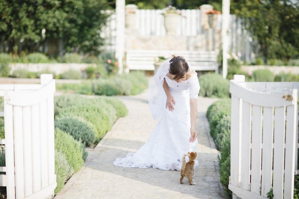 Wedding in Maison Blanche