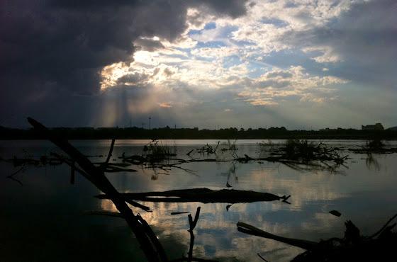 lake debris