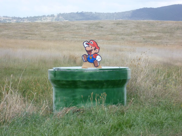 Mario on Gungahlin Drive