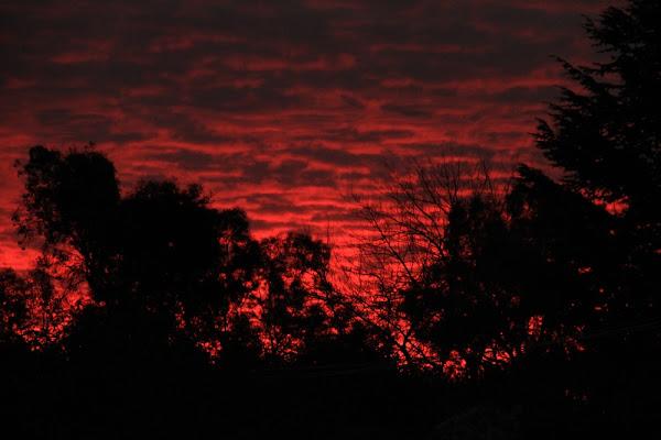crimson sky over Canberra