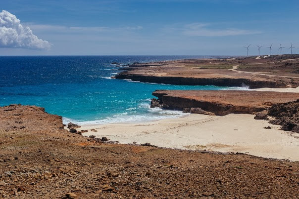 Dos Playa, Arikok