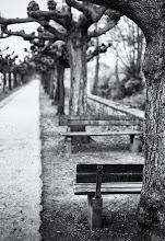 Photo: Free bench ©http://markuslandsmann.zenfolio.com/
