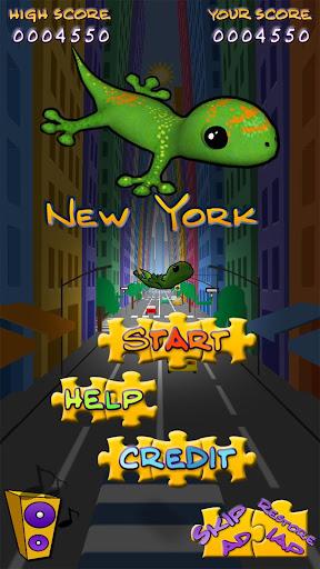 Acrobat Gecko New York 1.5 screenshots 1