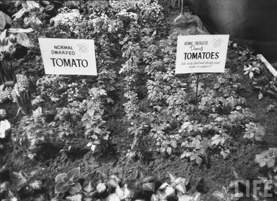 Atomic Gardens