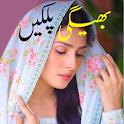 Bheegi palkein Romantic urdu Novel Book New story icon
