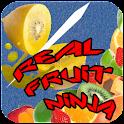 Real Fruit Ninja icon