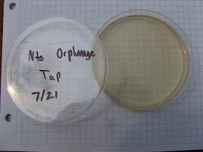 Photo: Water Sample Testing