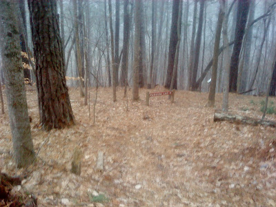 starting to snow on the Sycamore Trail at Umstead