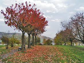 Photo: Der Klostergarten lädt zum Verweilen