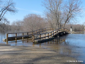 Photo: Water over the Bridge, 3.17.10