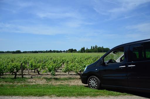 Explore os vinhedos franceses a partir de Paris