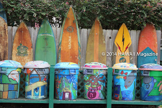 Photo: CULTURE CATEGORY, FINALIST. Side street surfboards and trashcans near Hanalei, Kauai. Photo by Lisa DeLuca-Weidner, Briarcliff Manor, New York.