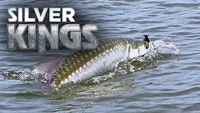 Silver Kings thumbnail