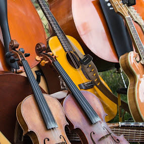 Fiddle Love by Jason Rose - Artistic Objects Musical Instruments ( violin, fiddle, instruments )